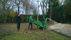 woodchip mulching available