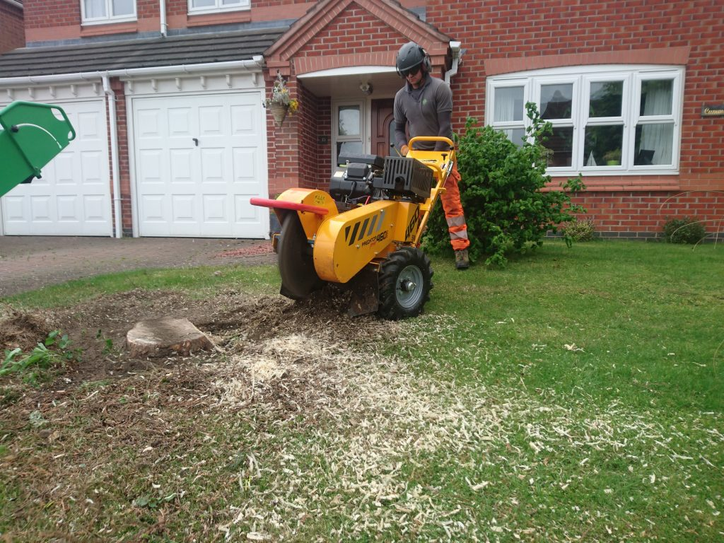 using a stump grinder